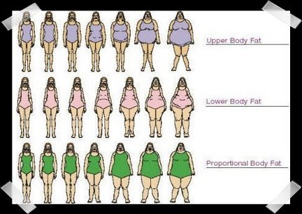 Prettyinpear More Body Shapes