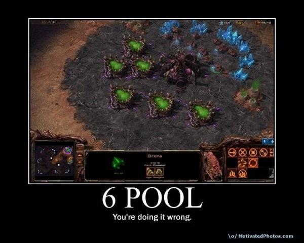 SC2 Dragon — How to defend a Zerg 6-pool rush (sorta) (PvZ)