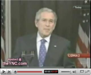 bush Bush, o prolixo embasado