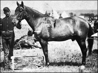 [Comanche+OldiePic]