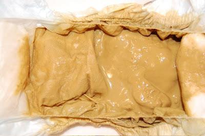 The Gfcf Poop Blog Yeast Die Off Diarrhea