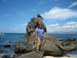 The Famous Apo Island Rock