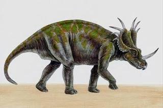 Uma das várias especies de dinossauros conhecida