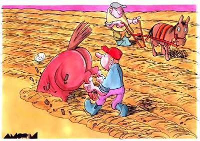 Um agricultor inovador