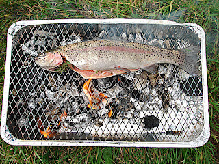 how to cook trout in foil on bbq