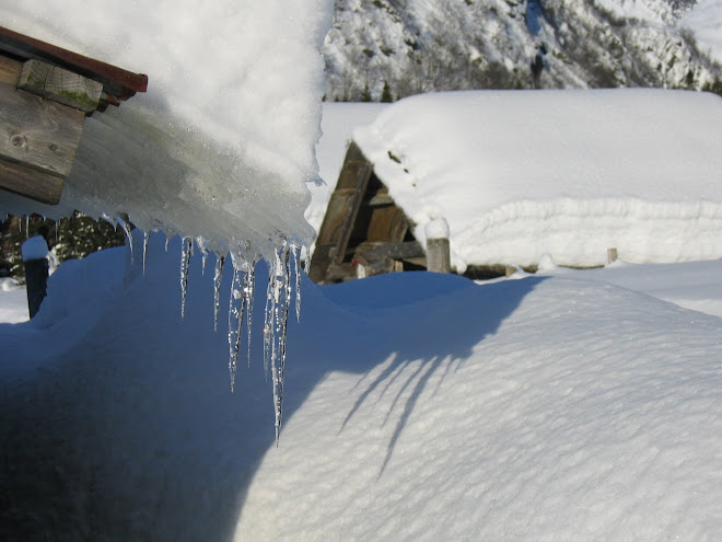 Vinterstemning
