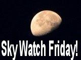 Bilder på en fredag