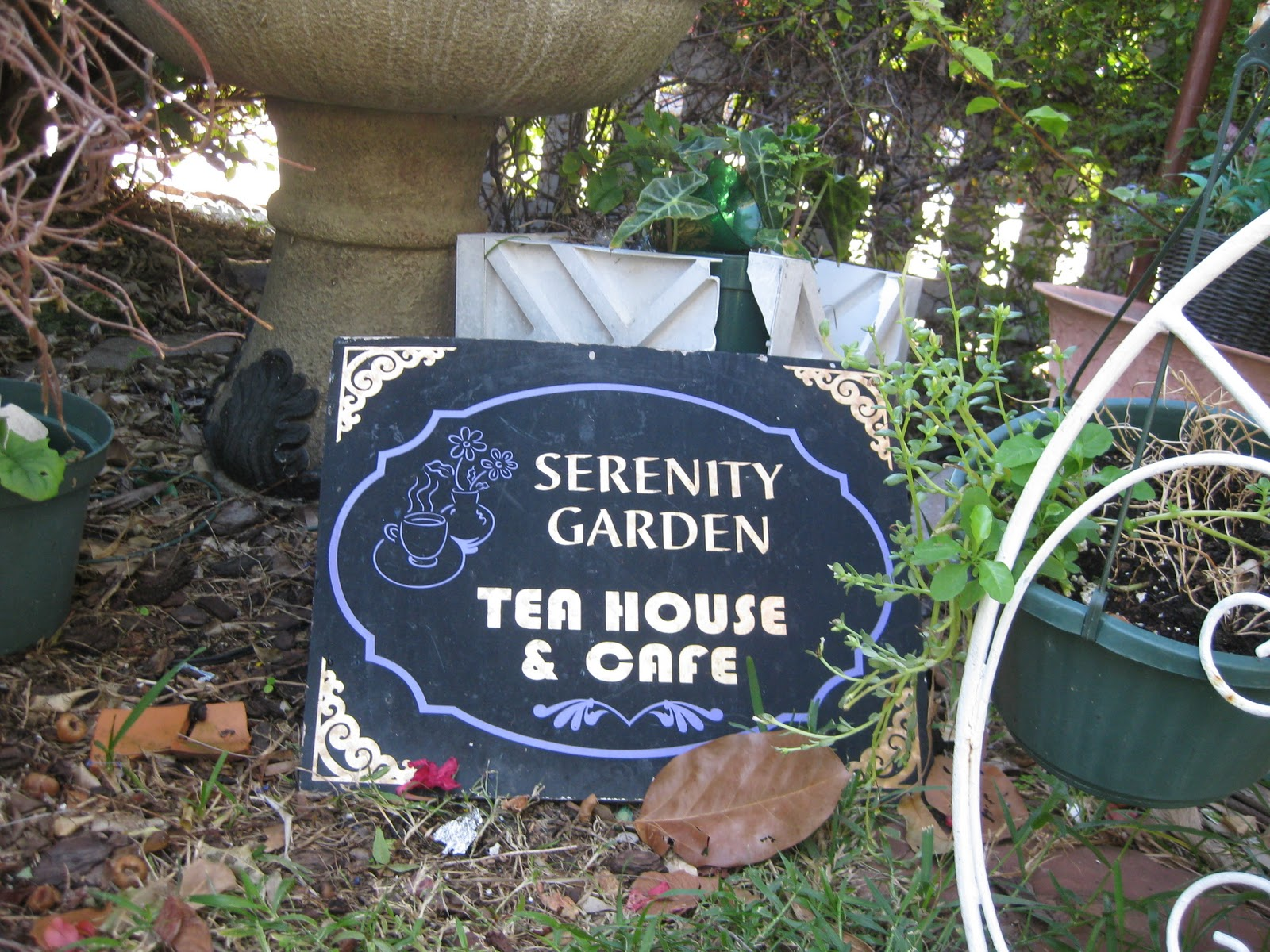 All The Latest Dirt: Serenity Garden Tea House And Cafe, W