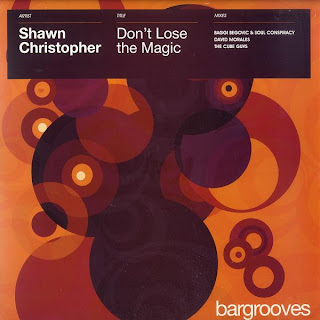 Shawn Christopher - Don't Lose The Magic [12'' Vinyl 2008]