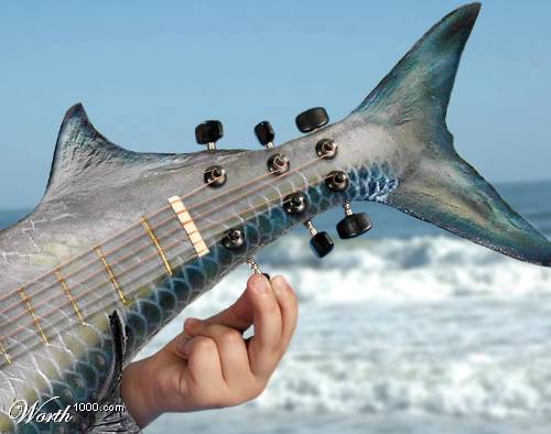 You can tune a guitar, but you can't tuna fish...