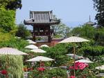 CLICK for more photos of this famous temple garden !