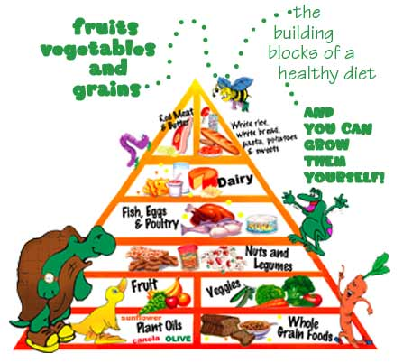 Prinsip Diet