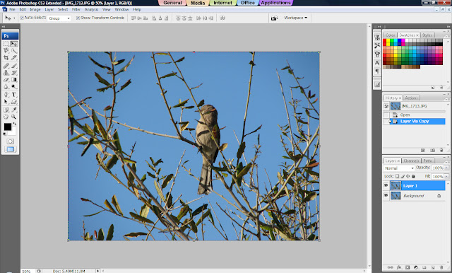 Photoshop Tutorial, How to Sharpen Your Photos, Sharp Images, Sharp Photos, Duplicate layer