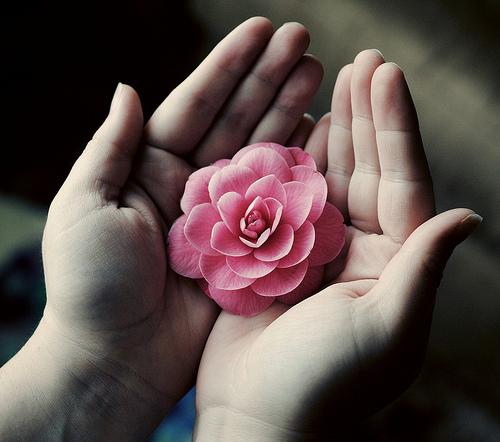 Resultado de imagem para oferecer flores