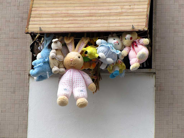 Stuffed animals hung to dry, via Buontalenti, Livorno