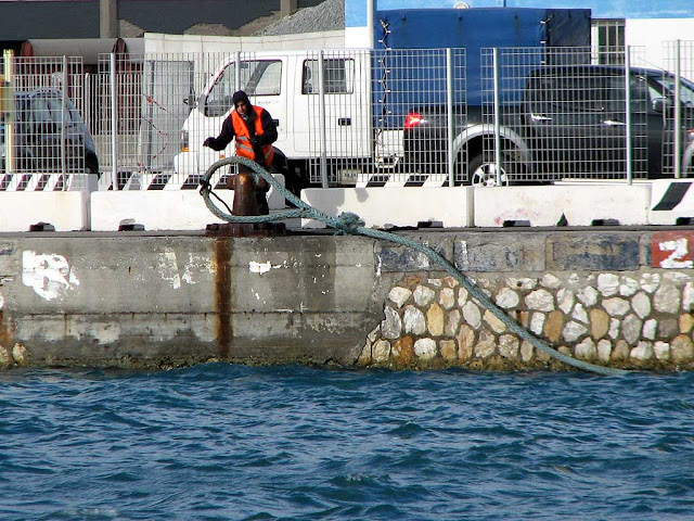 Dockworker, port of Livorno
