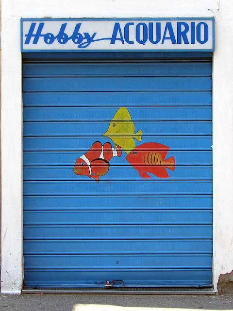 Fishes on a shutter, Livorno