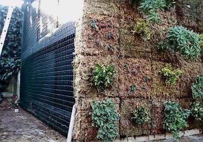 El jard n vertical de caixaforum madrid el blog de jos for Jardin vertical caixaforum