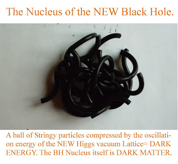 Model for the Higgs (dark matter) Particle nucleus of  a Micro Black hole