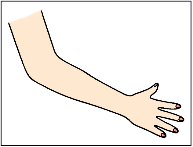 clipart arms and legs - photo #45