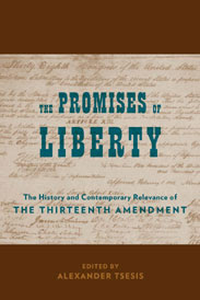 13th amendment essay