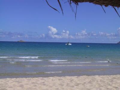 Da Uomo Forte Blu TRAMONTO PALMA IBIZA Hawaiana Cancun Messicano Caraibi Camicia