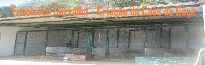 Francisco Carvalho - Criação de Cães de Caça