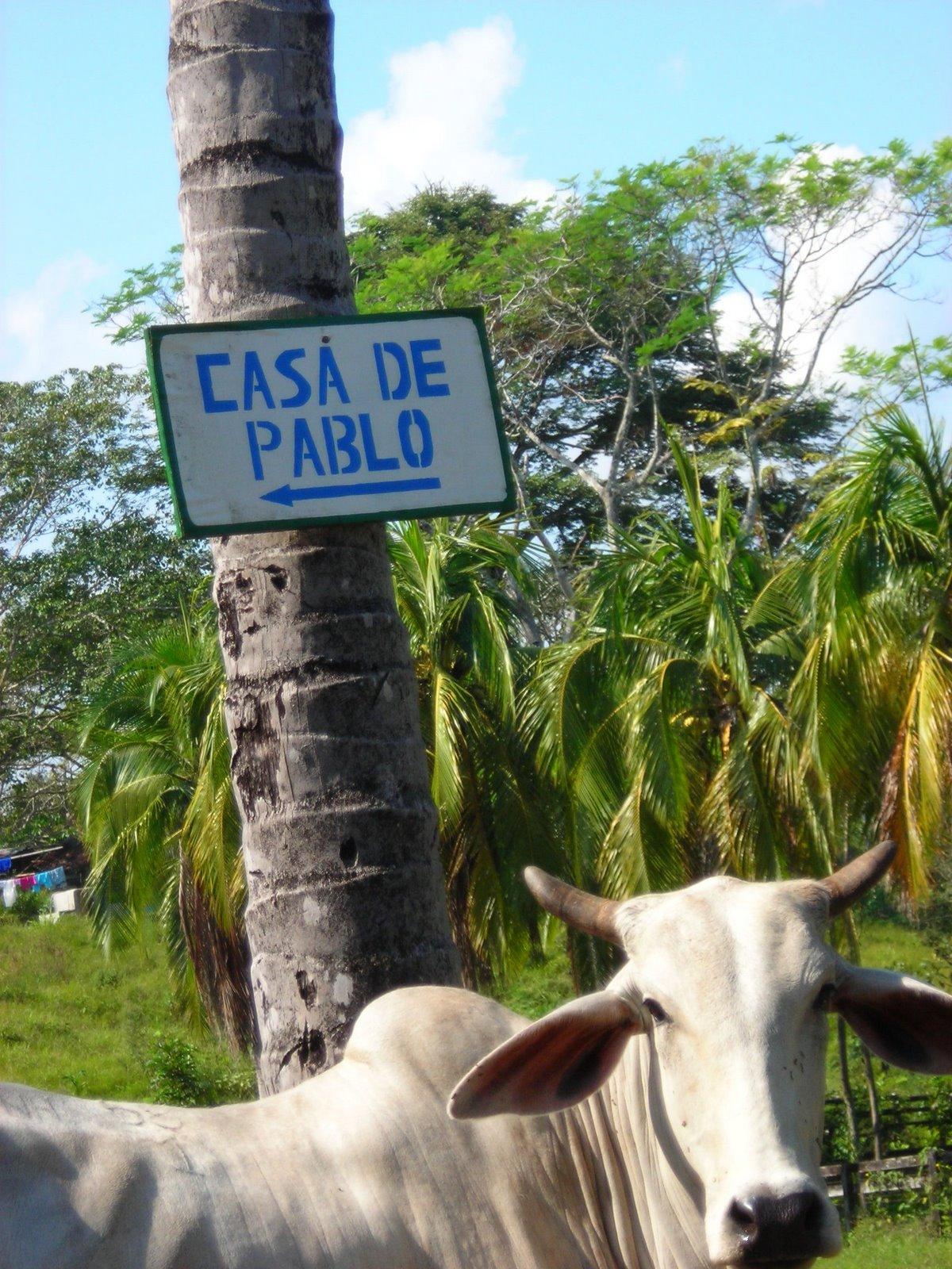 La casita de Pablo Escobar Gaviria III