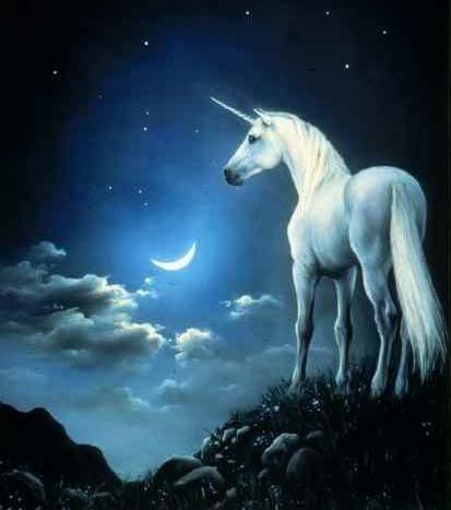 unicorn adalah