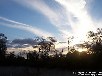 Sunset in the Australian Bush - Clouds, Sky, Trees and Sun
