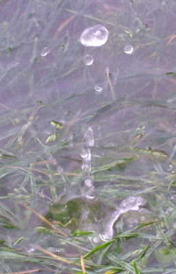 water droplet splashing into puddle - still shot - slow motion