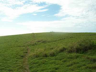 green grassy hill at moonee beach near coffs harbour, australia that looks like the windows xp default desktop background 'bliss'