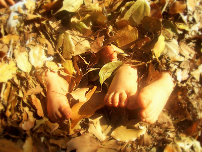 photo of feet in pile of leaves