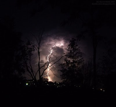 lightning striking dead tree at night