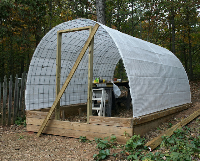 Permanent Greenhouse With Cattle Panels