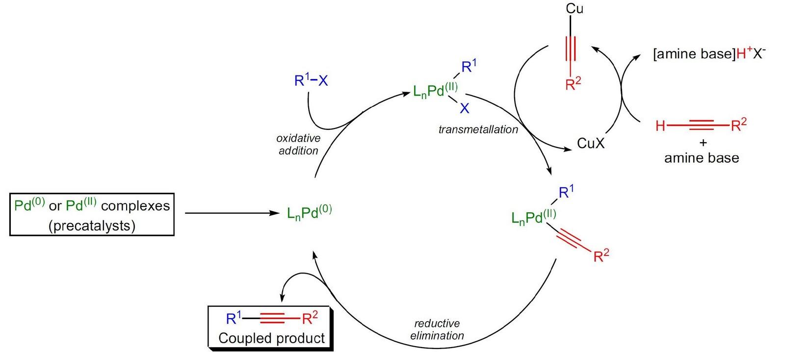Raji Chem World Palladium Catalyzed Cross Coupling Reactions