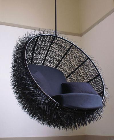 [urchin1.png]