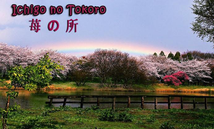 Ichigo no tokoro
