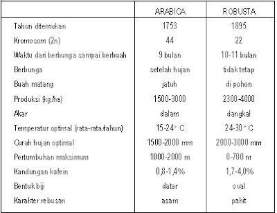 perbedaan kopi robusta arabika