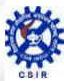 CSIR Job Vacancy