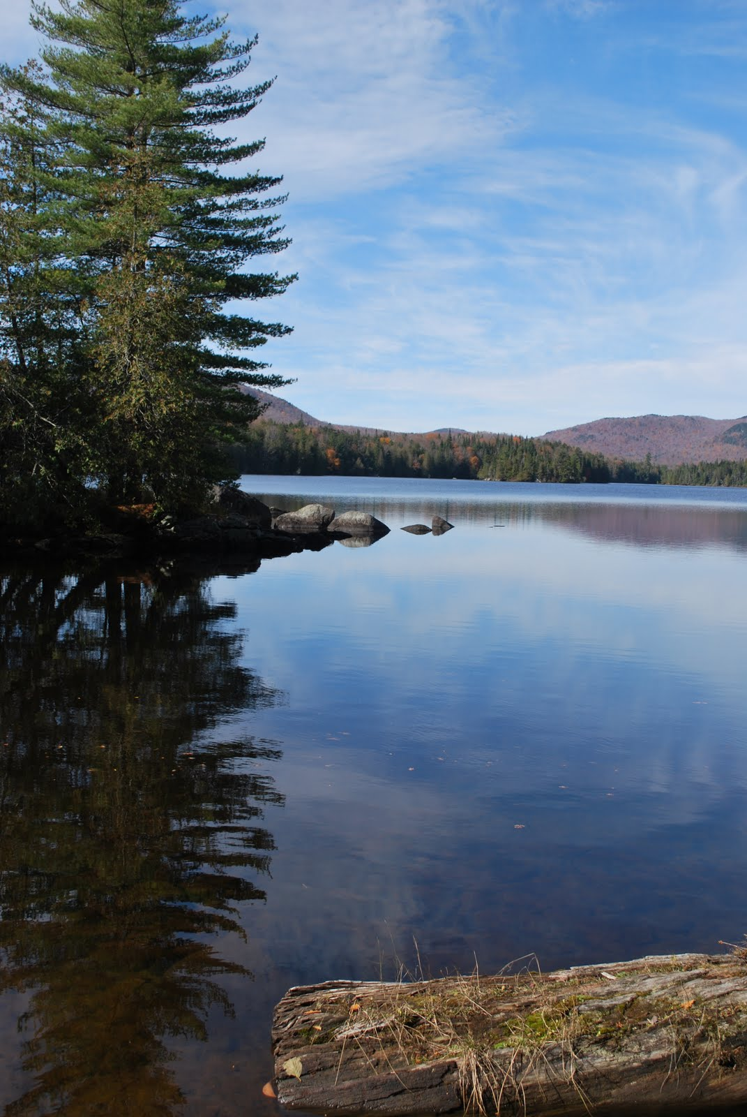 The Adirondack Whitefish - - The Adirondack Almanack
