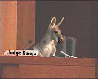 http://bp3.blogger.com/_BVGz7lWZUIY/RzZR4qeBLlI/AAAAAAAAIc4/l0WUEk-1gcM/s320/judge+kanga.jpg