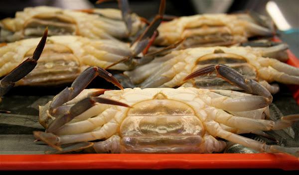 Cornmeal-Crusted Soft Shell Crabs - alexandra's kitchen