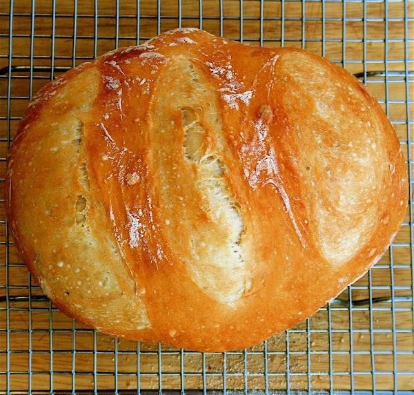Artisan Bread In Five Minutes A Day, Seriously | alexandra's kitchen