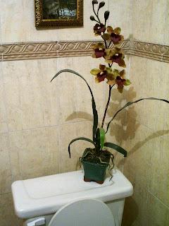 Casa Florarte Accesorios Y Articulos Para Decoraci N