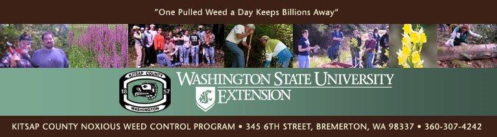 WSU Kitsap County Noxious Weeds