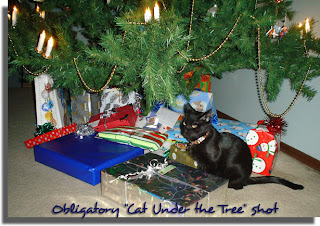 Obligatory Cat-Under-The-Tree shot