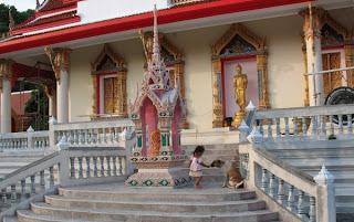 Girl feeding dog at Kata Temple