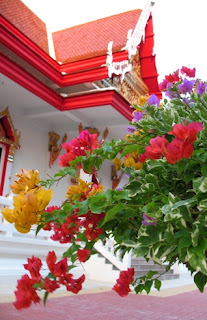 Flowers at Kata Temple