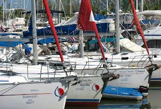 Yachts at Boat Lagoon